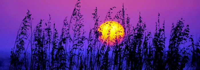 sunrise_j0382366_wide.jpg