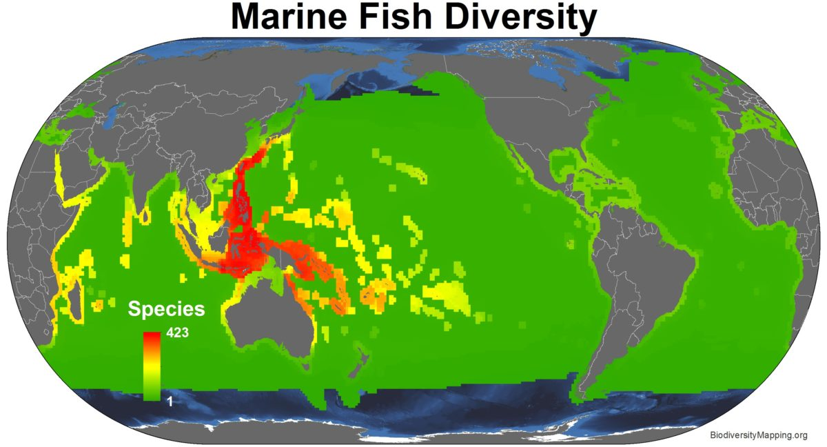 Marine_fish_all_spp-1200x648.jpg