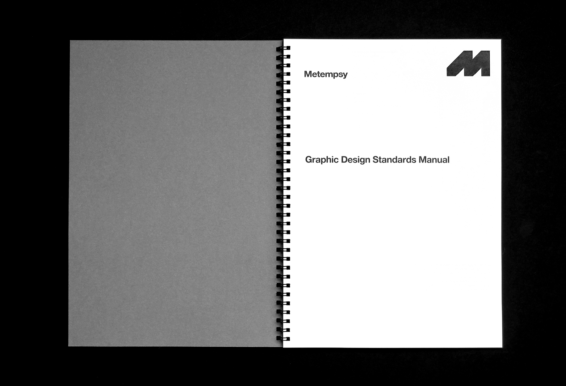 Metempsy-Graphic-Design-Standards-Manual-2.jpg