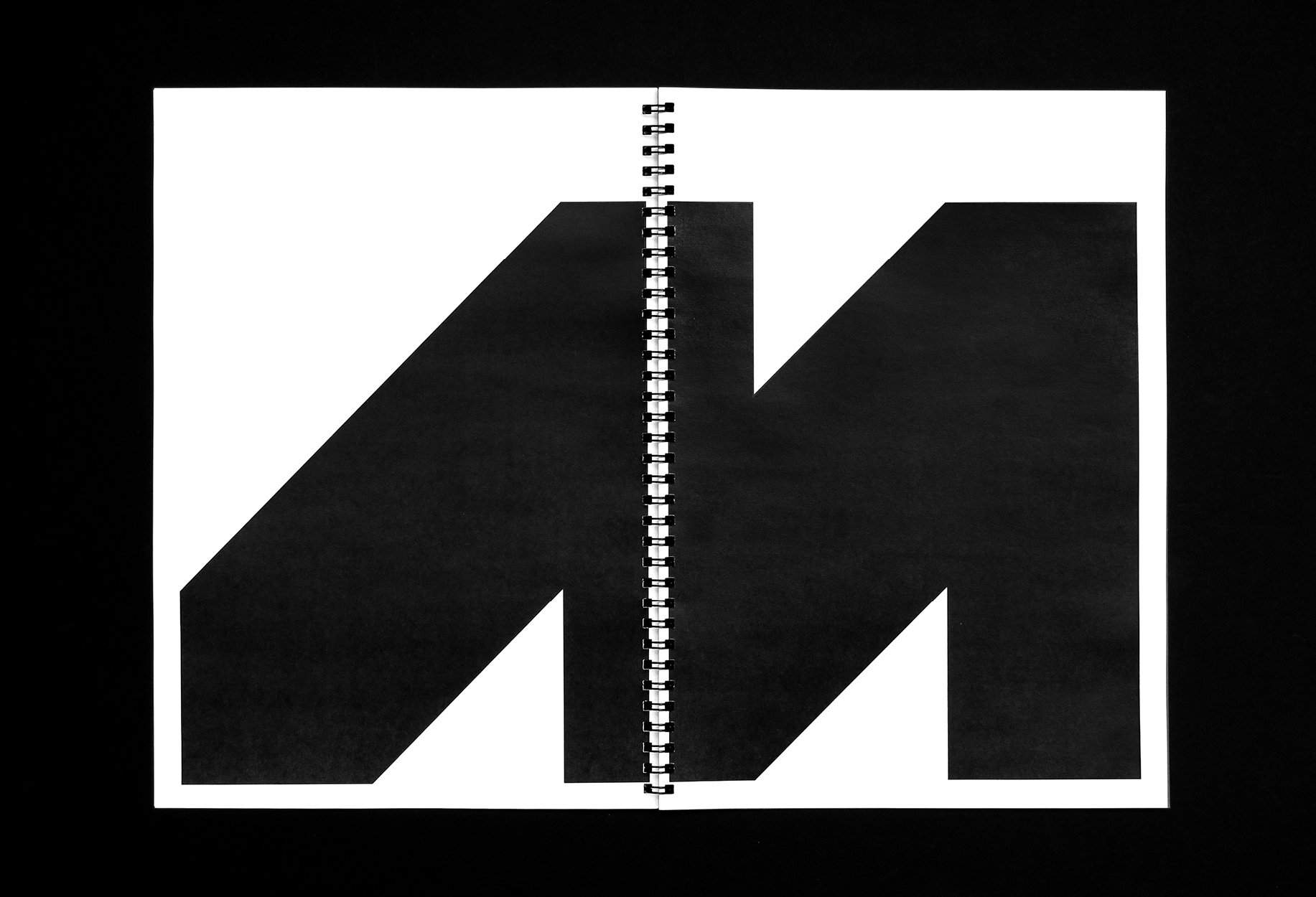 Metempsy-Graphic-Design-Standards-Manual-17.jpg