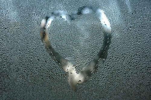 calgary-window-condensation.jpg