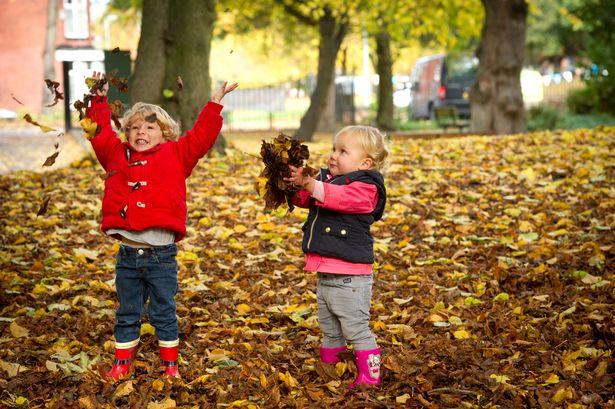 VC_MEN_011116_Autumn_leaves006JPG.jpg