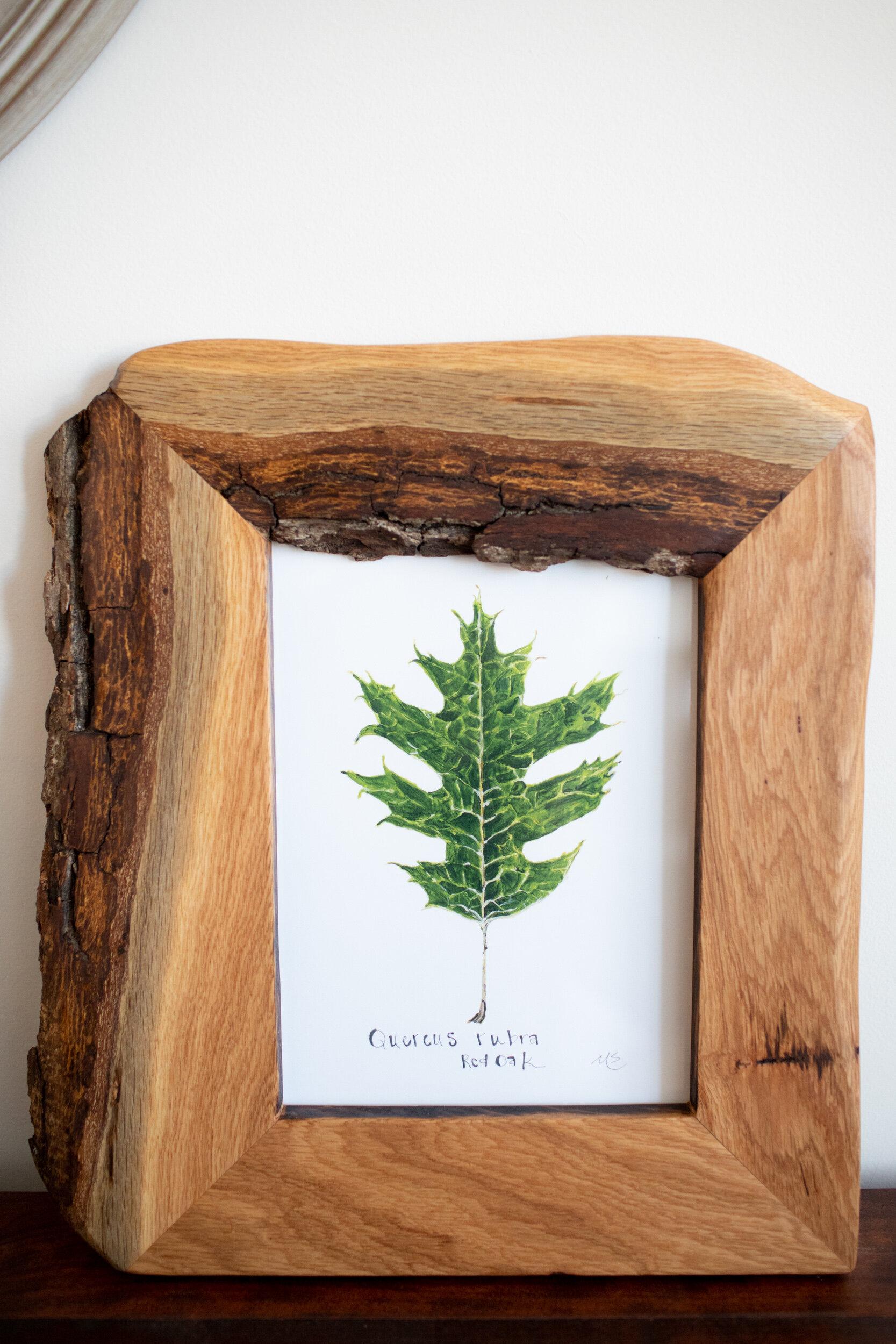 framed botanicals -8.jpg