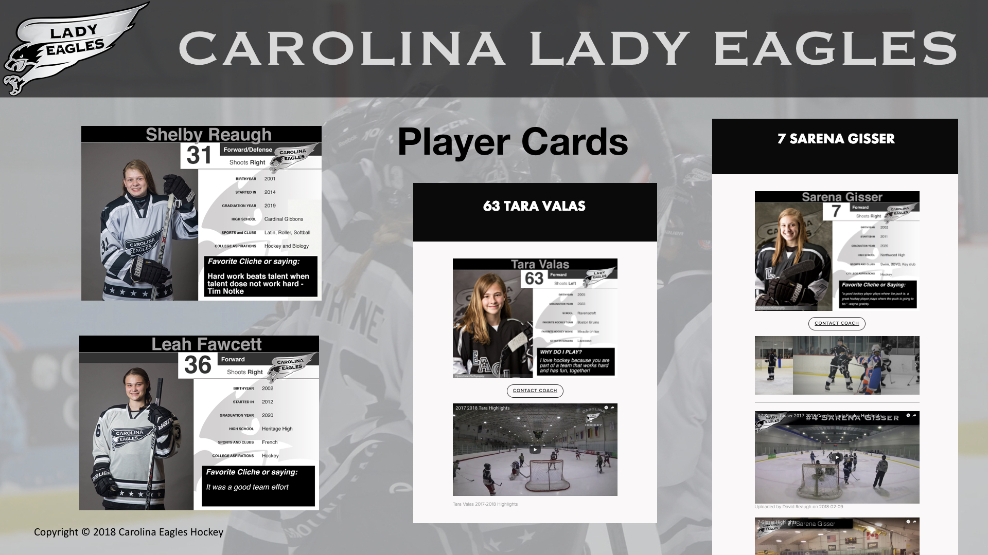 Player Cards and Highlights