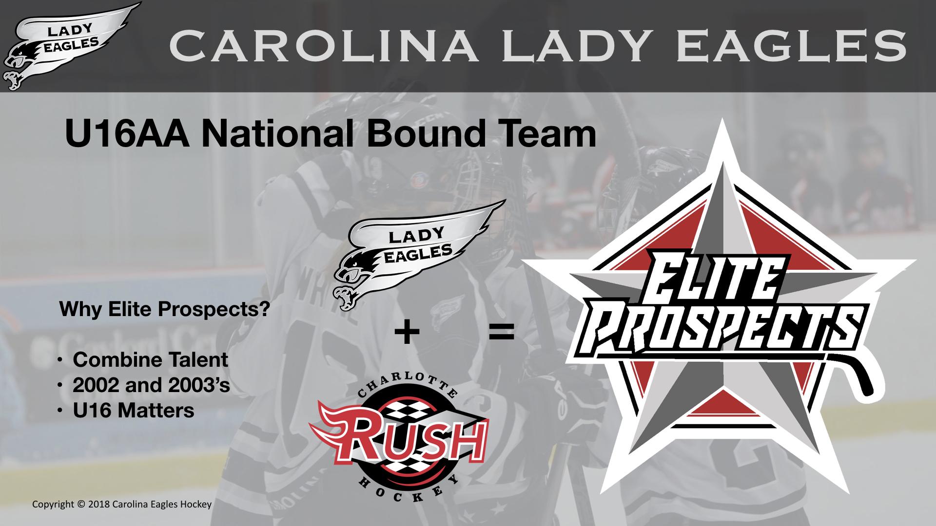 U16AA NB Elite Prospects Team
