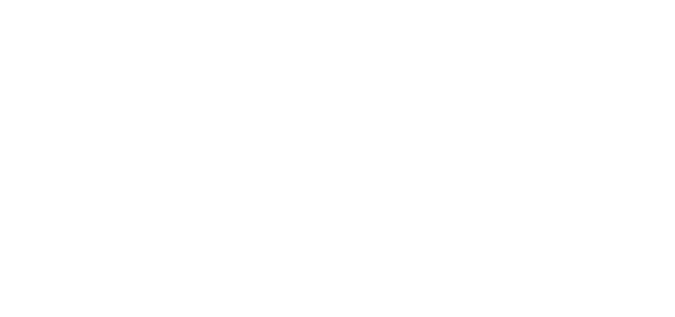MFF-2019-David-Carr-Award-white-WINNER.png