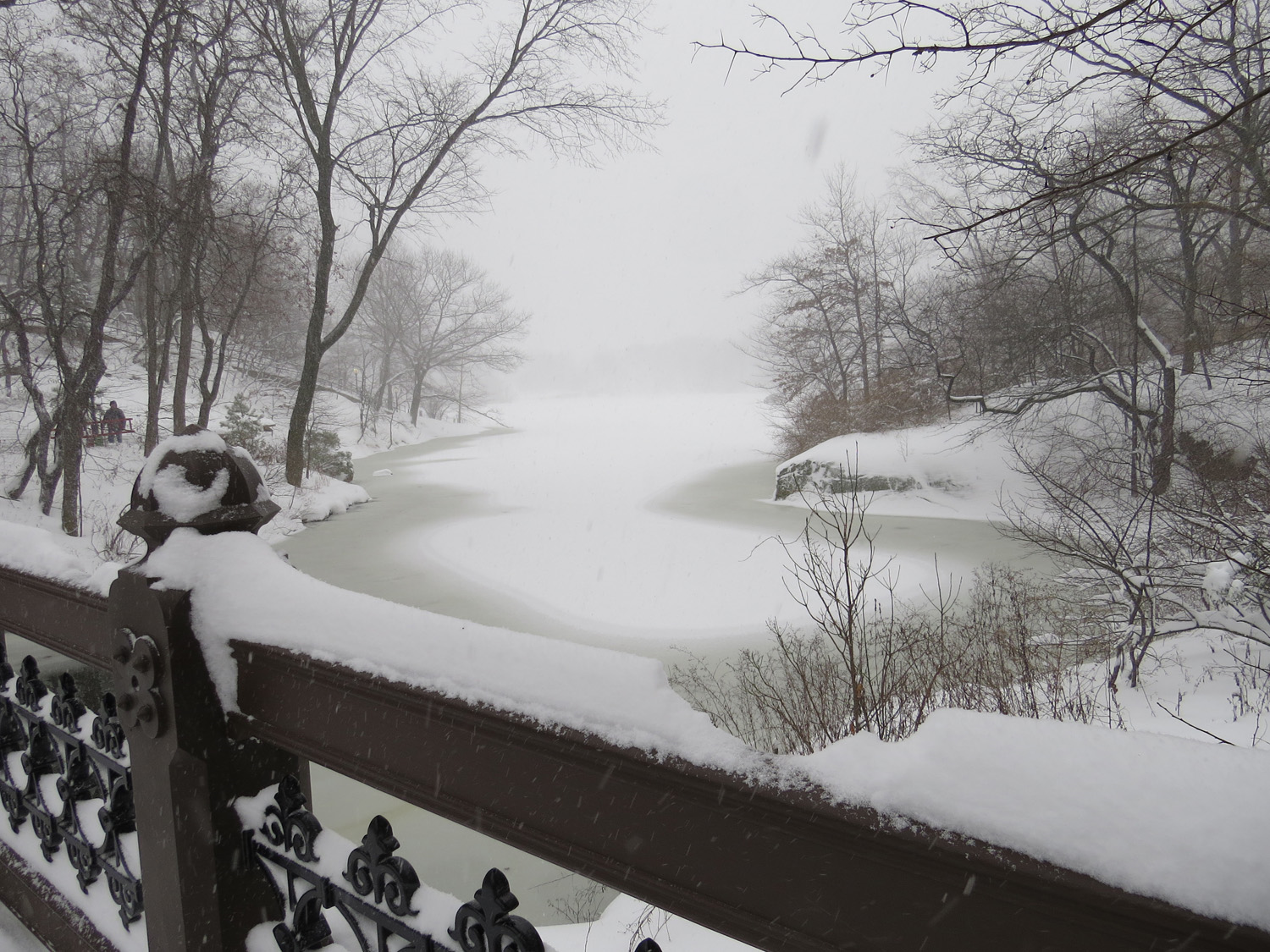 Central Park, Oak Bridge, Jan. 23, 2016