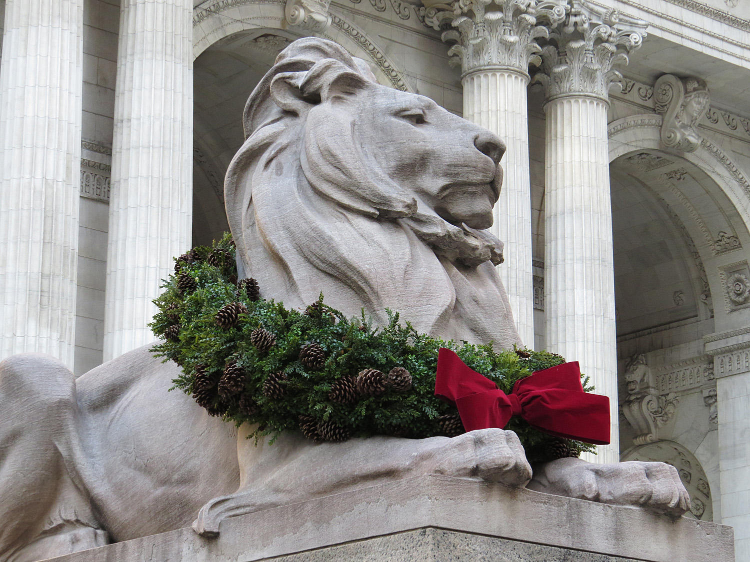 A New York Public Library lion, decked out in holiday style, coming soon!