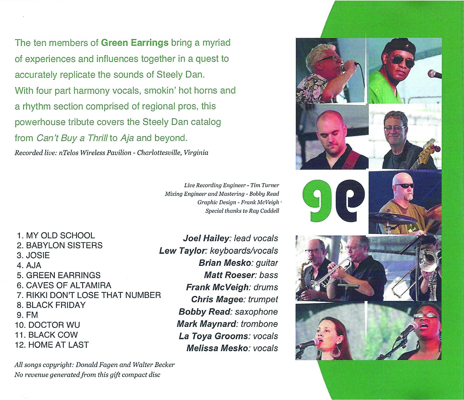GREEN EARRINGS BACK COVER.jpg
