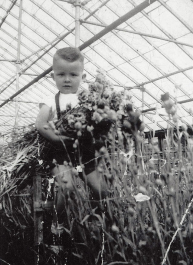 The Schenkel family raised roses for decades in the greenhouses now occupied by Lynchburg Grows.