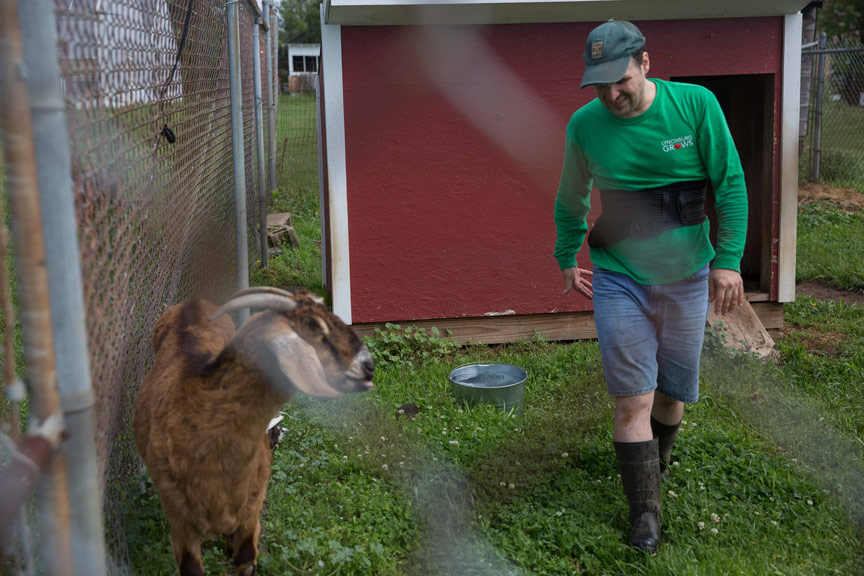 The farm animals get happy when Keith comes around.