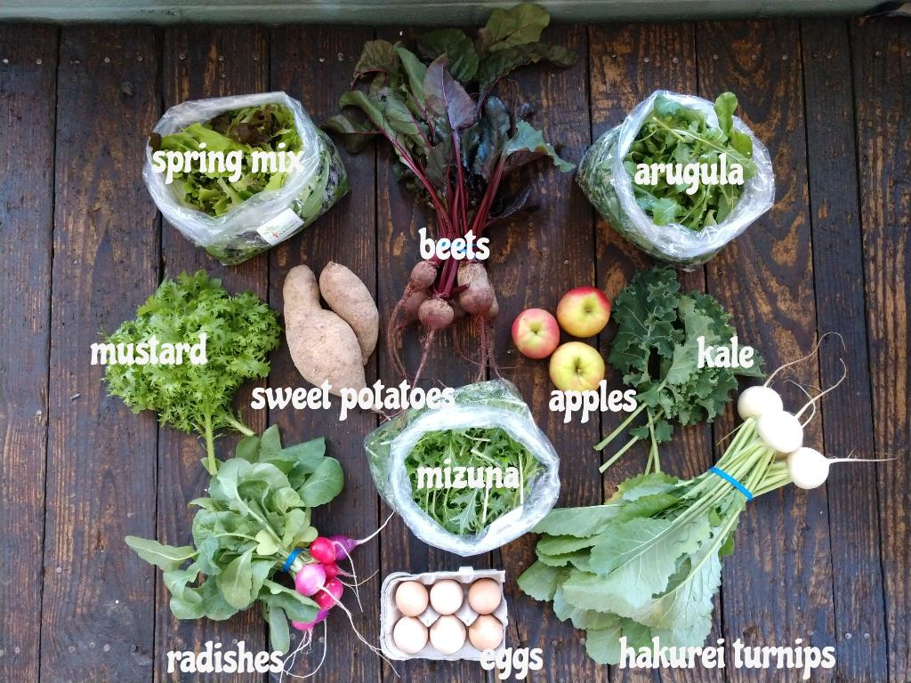 You can enjoy produce from Lynchburg Grows by visiting the farm during store hours or by signing up for the Veggie Box CSA program.