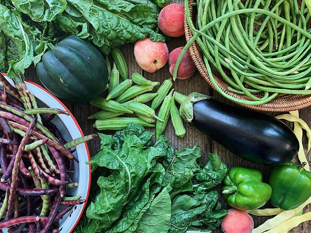 Join the Veggie Box - Our Community Supported Agriculture program lets you take home a share of the harvest every week during our long growing season.