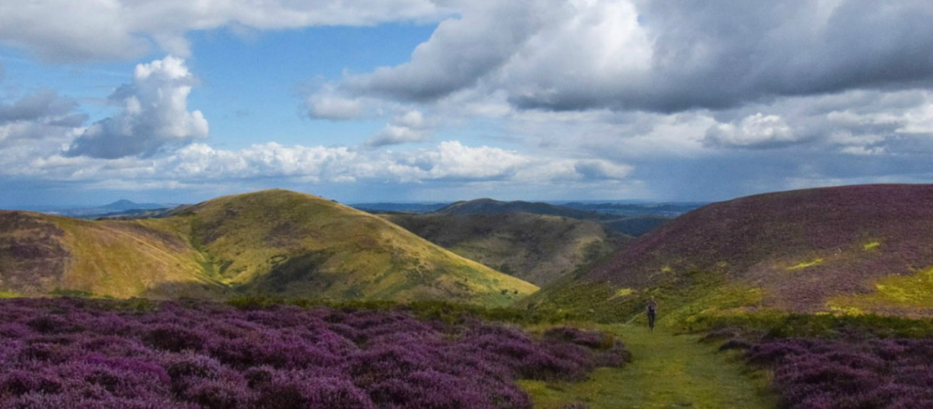 Cardingmill Valley, The Long Mynd