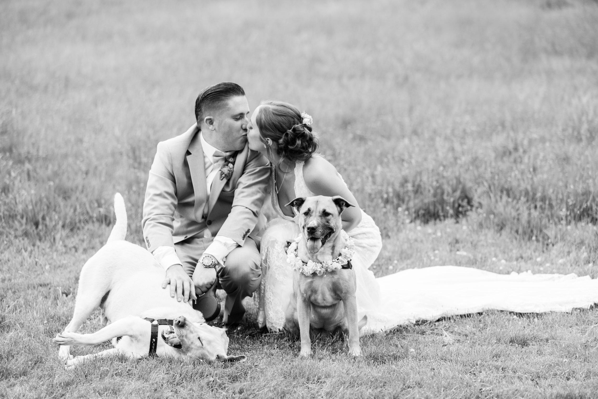 Olivia-Justin-Friel-Wedding-353.jpg