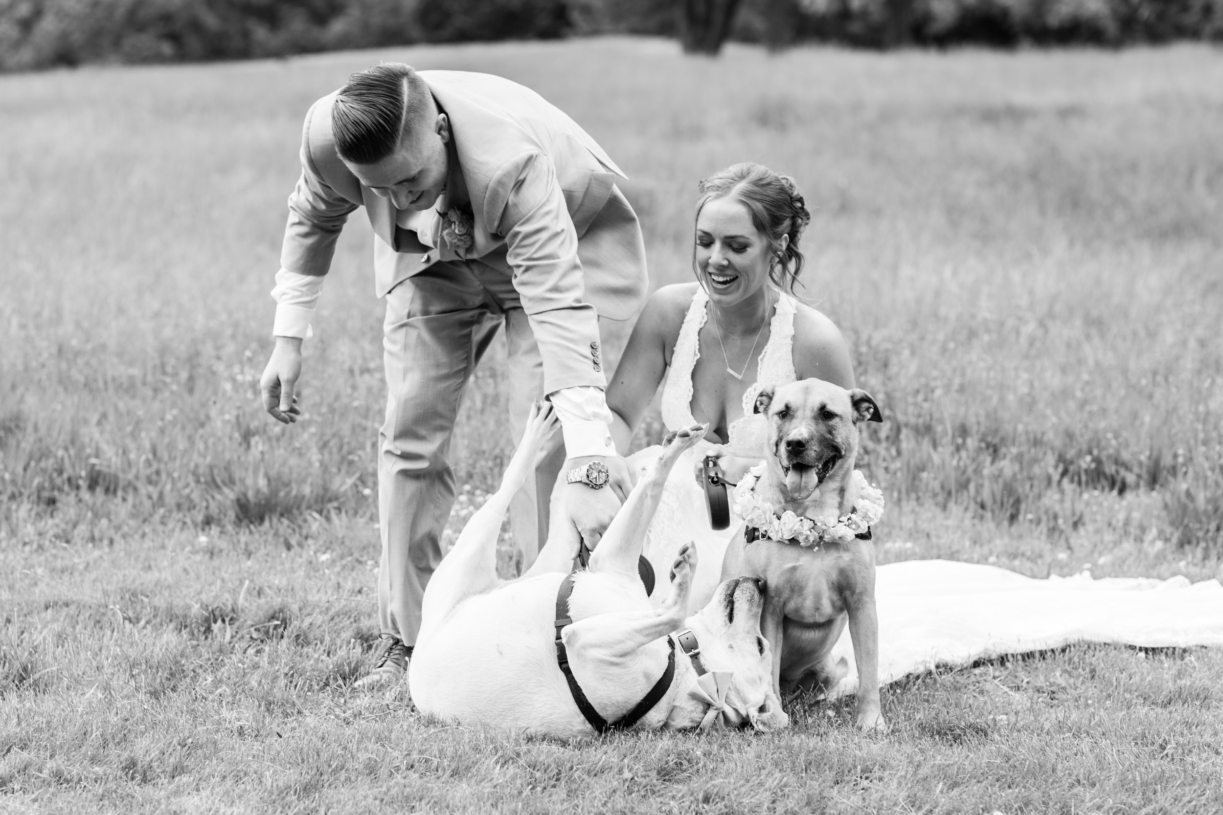 Olivia-Justin-Friel-Wedding-356.jpg
