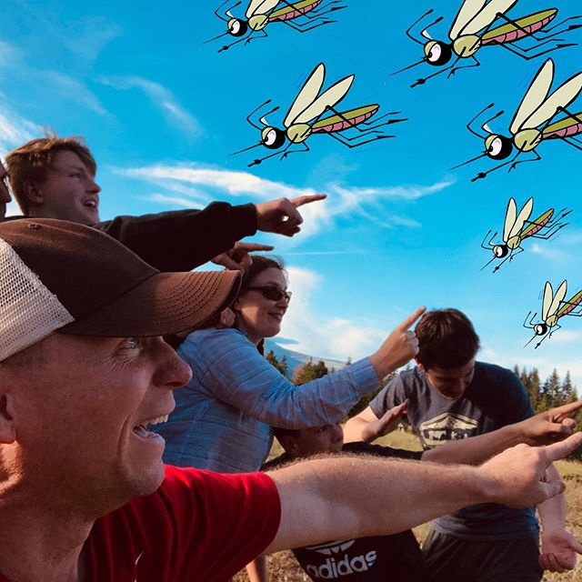 So we had to cut short our backpacking excursion yesterday... #whenmisquitoesattack #runaway #biblicalproportions 100 bites and counting for this crew!