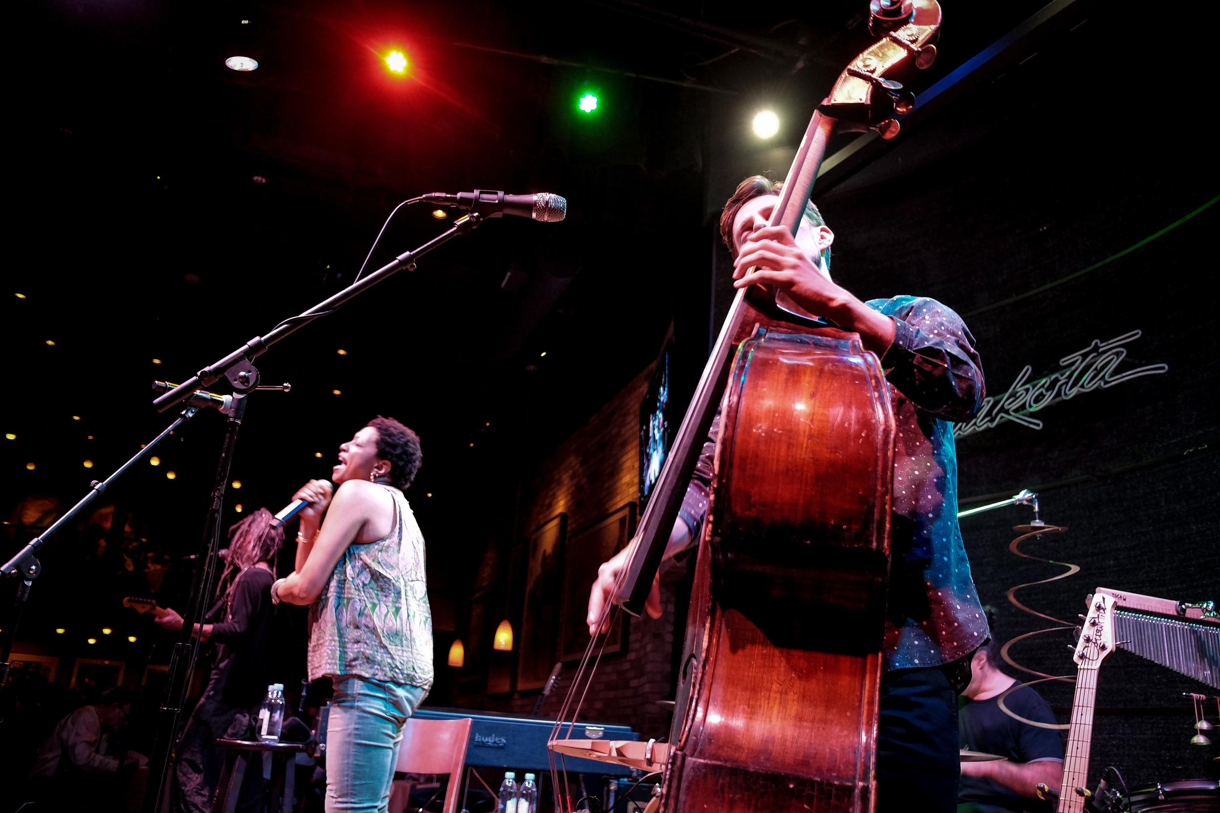 27. Lisa Fischer,Dakota Jazz Club.