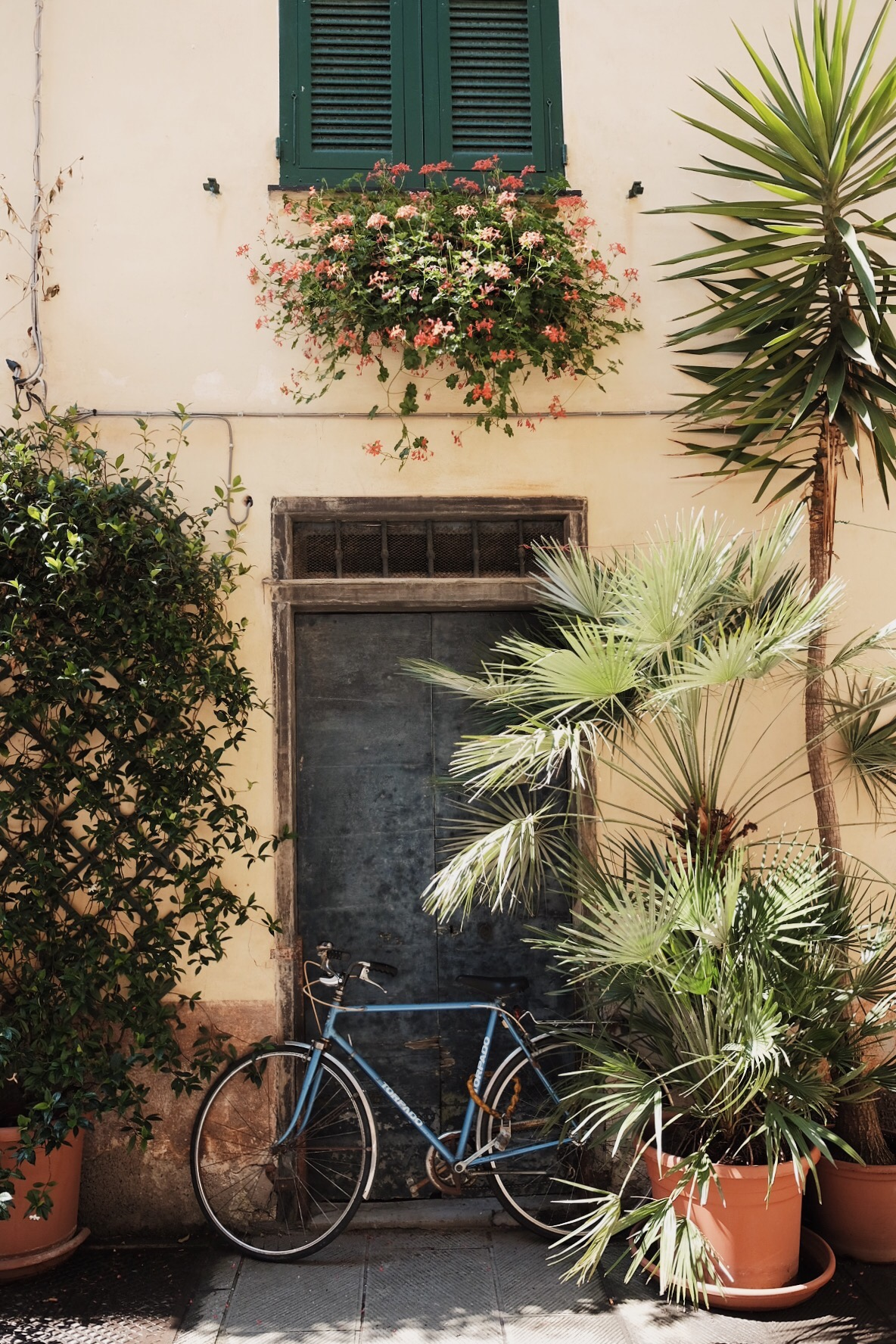 VSCO Cinque Terre 2016 - 4 of 74.jpg