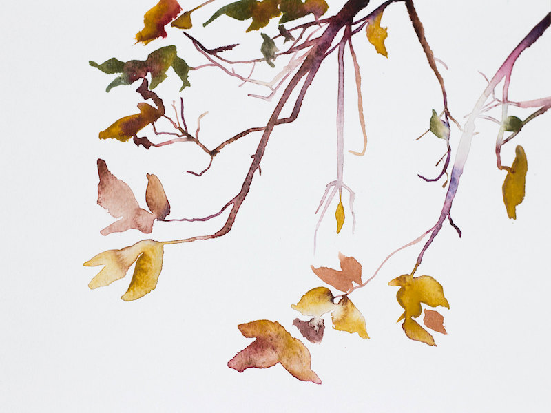 Autumn Leaves No. 2