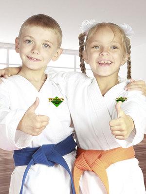 karate-lessons-for-kids.jpg