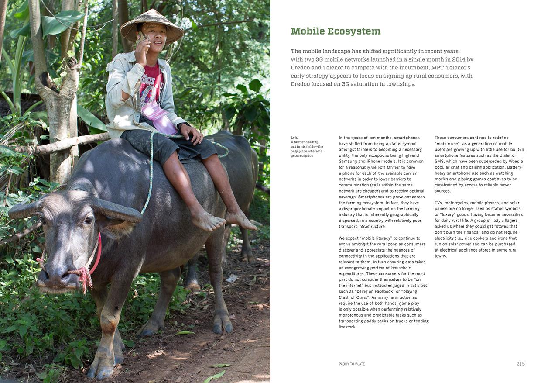 Mobile Ecosystem.jpg