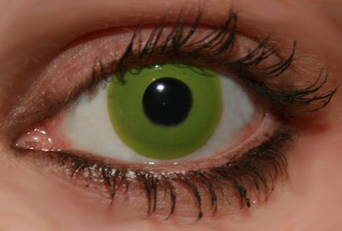 innovision-contact-lenses-solid-tone-green-7772-0-1350653146000.jpg