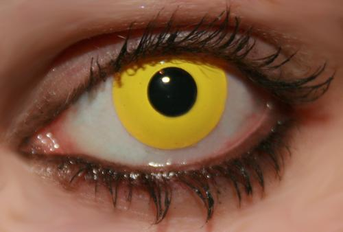 innovision-contact-lenses-solid-tone-yellow-7776-0-1350653146000.jpg