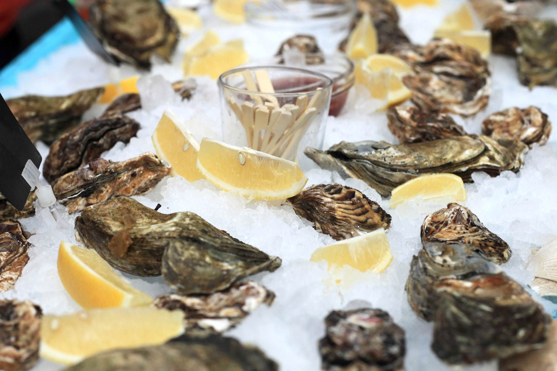 oysters-on-ice.jpg