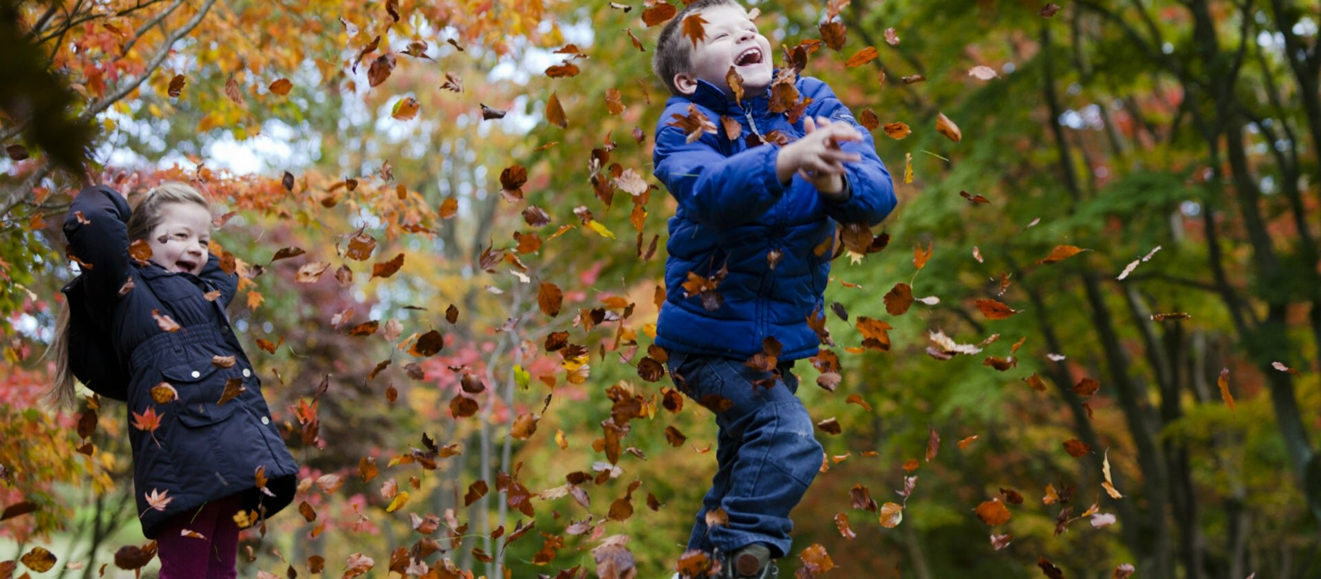autumnleavesplayingbodnant1040507megantaylor.jpg