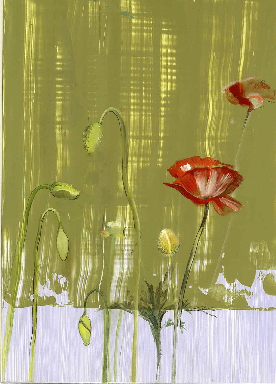 "Poppy  oil on panel 5""x7"" 2005"