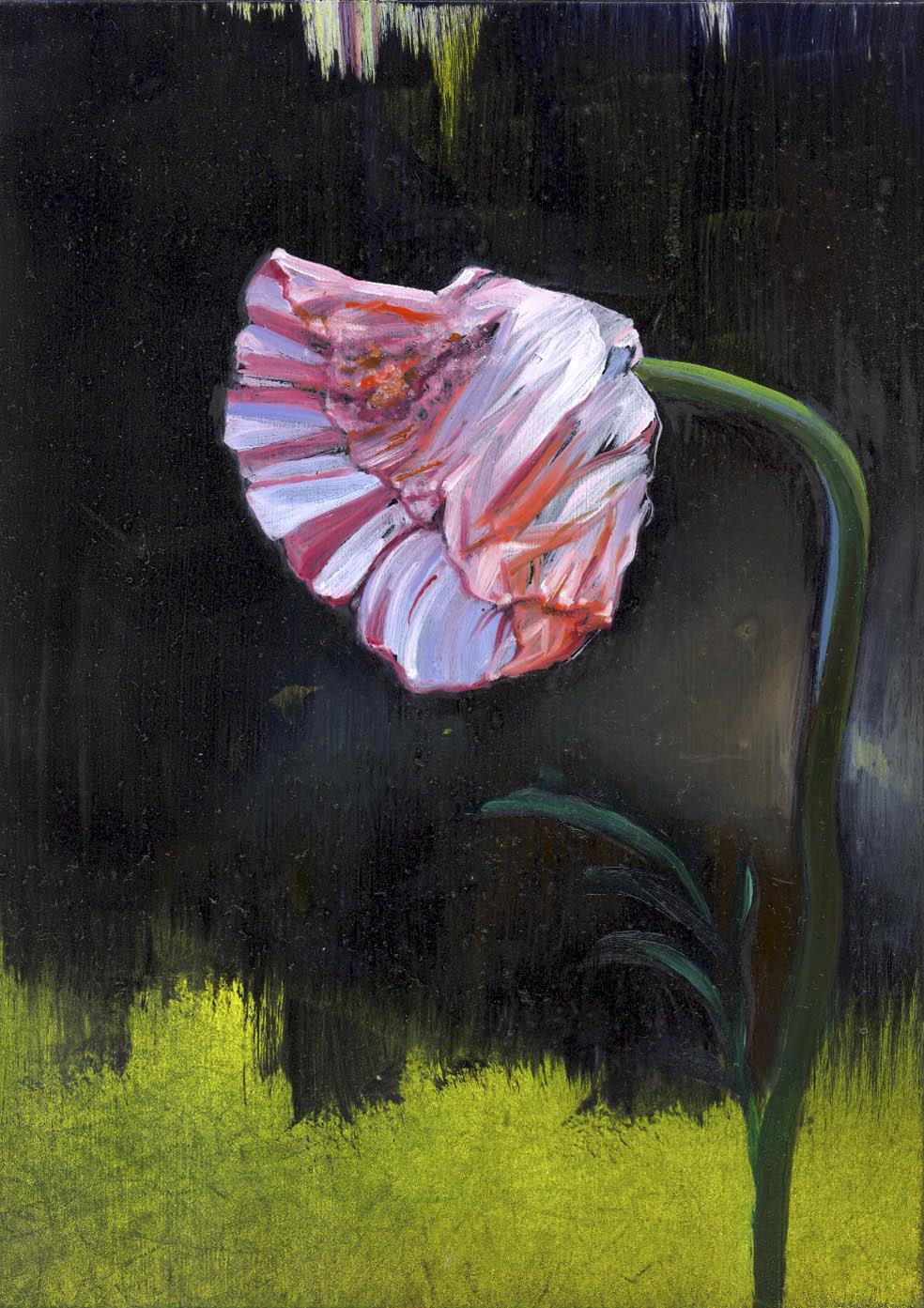 "Poppy  oil on panel 7""x5""2007"