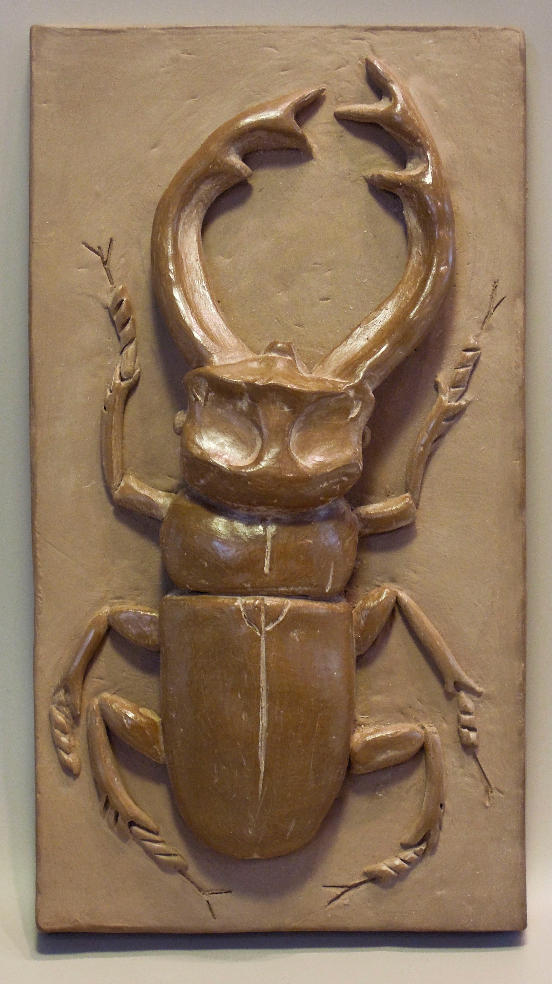 """Staghorn Beetle #2 *   burnished terracotta 3.75"""" x 7"""" 2017"""