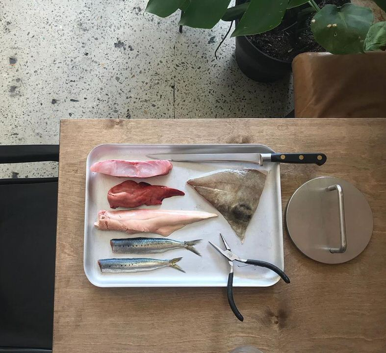 fish weight and tray.JPG