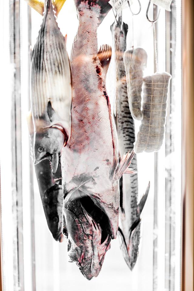 The Fish Butchery_-2.jpg