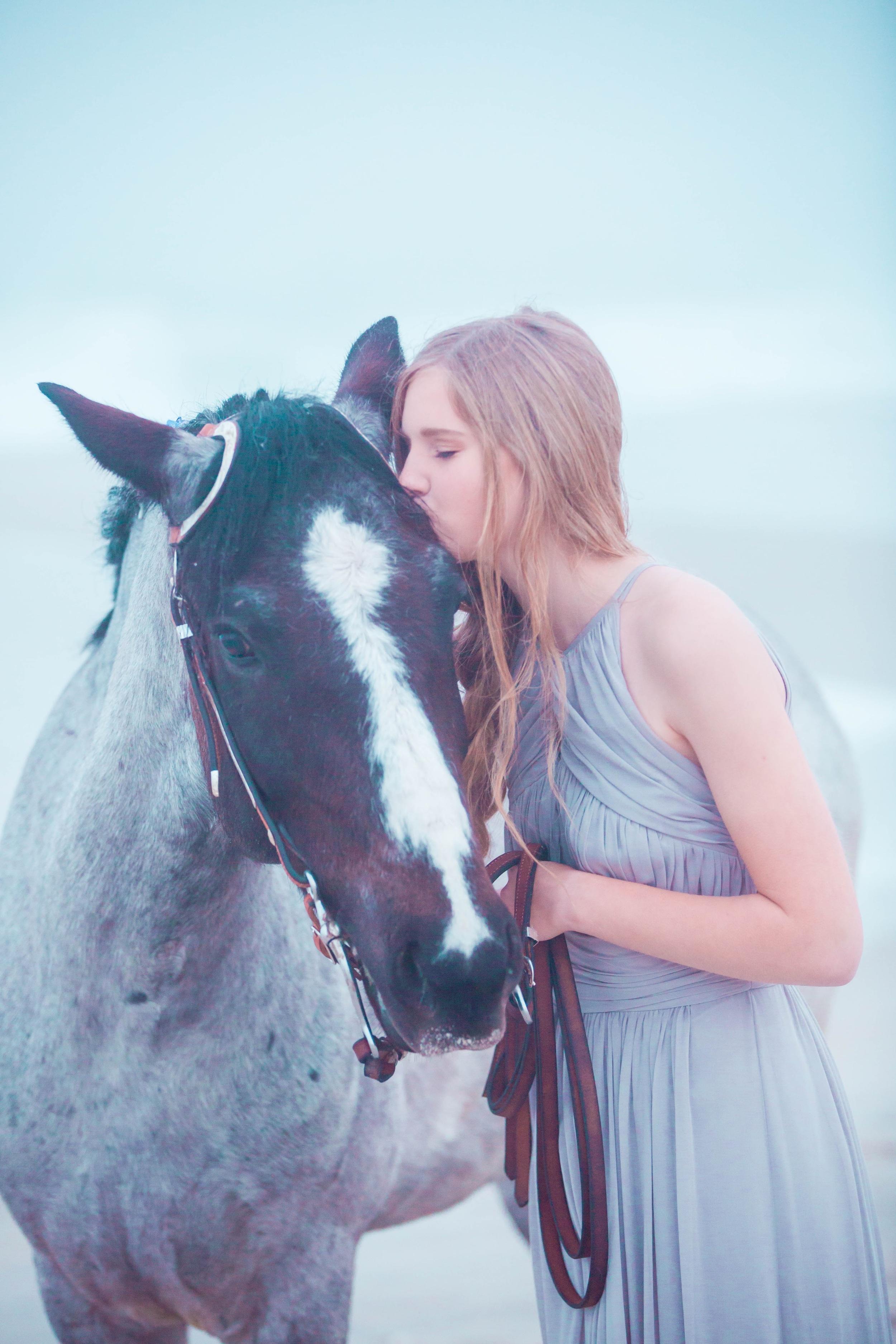 Equine Photography   Lynn Rose Photography   Leesport, PA