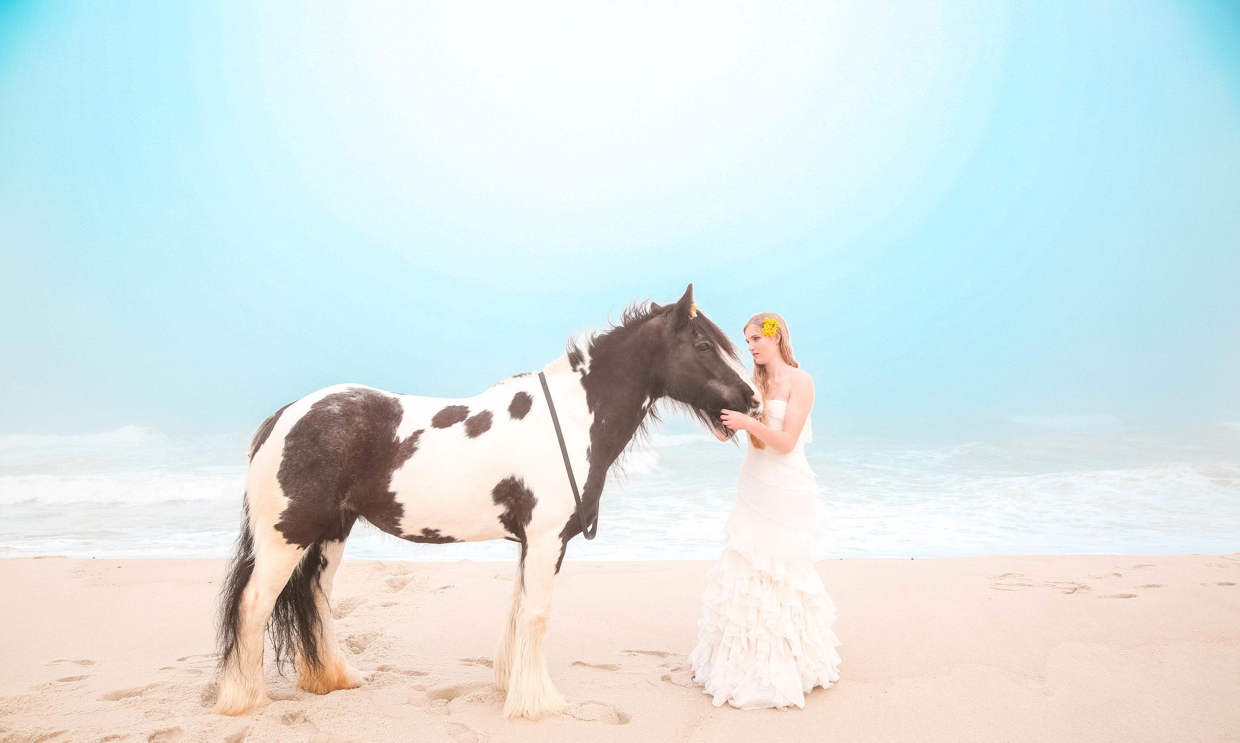 Island Beach Horses-107.jpg