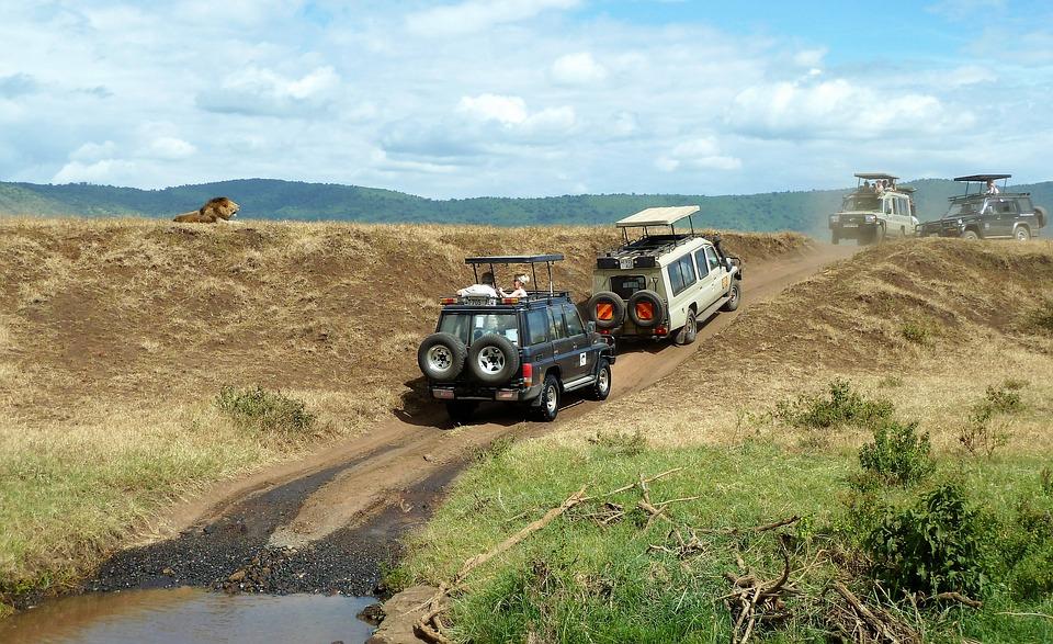 Tanzania Ngorongoro 5.jpg