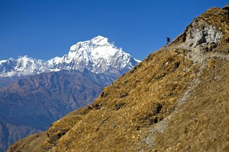 Dhaulagiri trekking.jpg