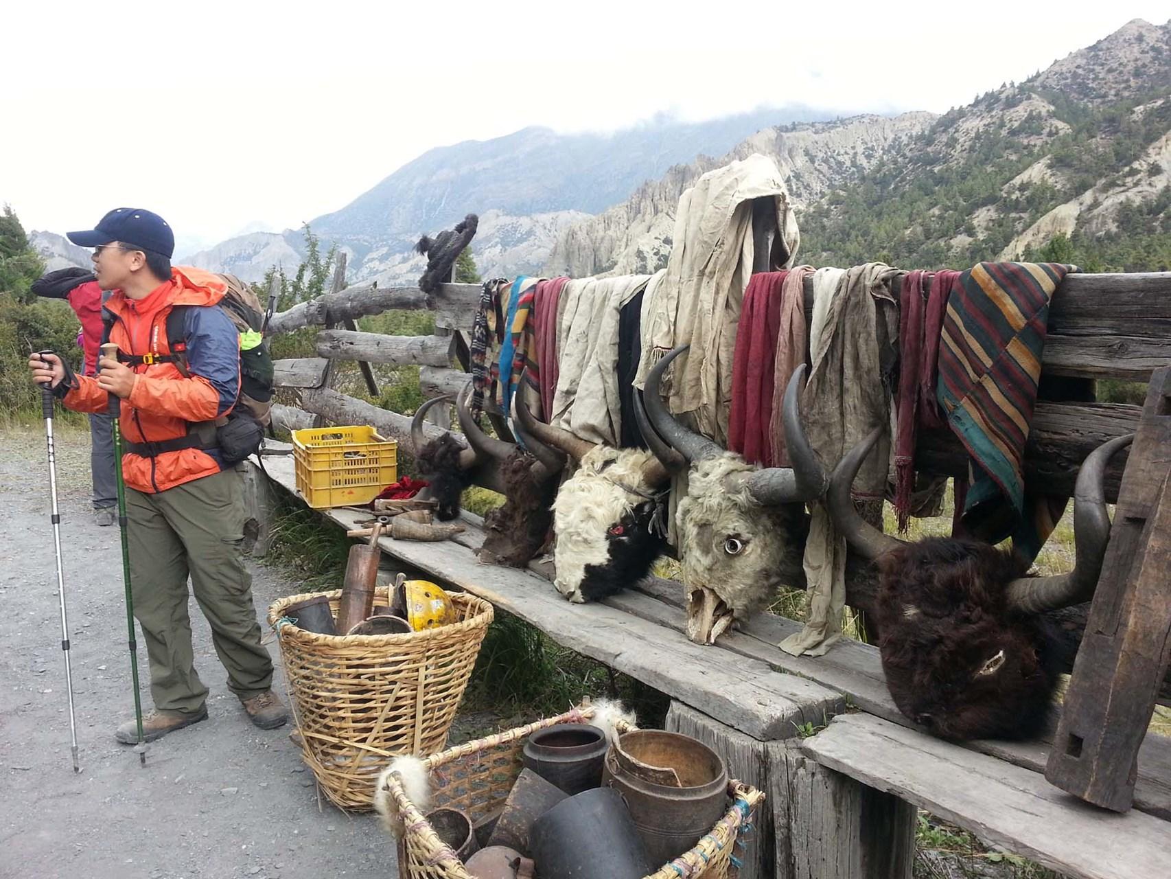 Nepal Annapurna Circuit 8.jpg