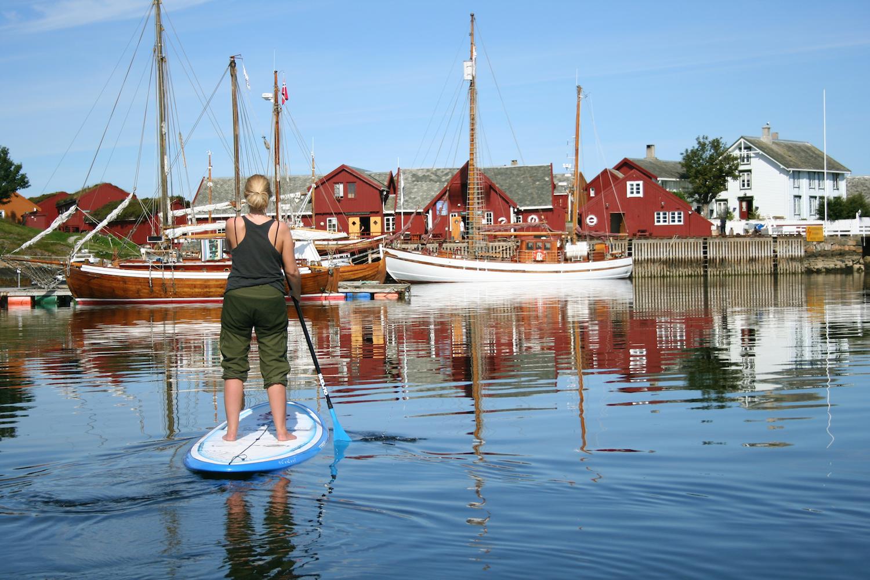 Norsk Gåsehud B.jpg