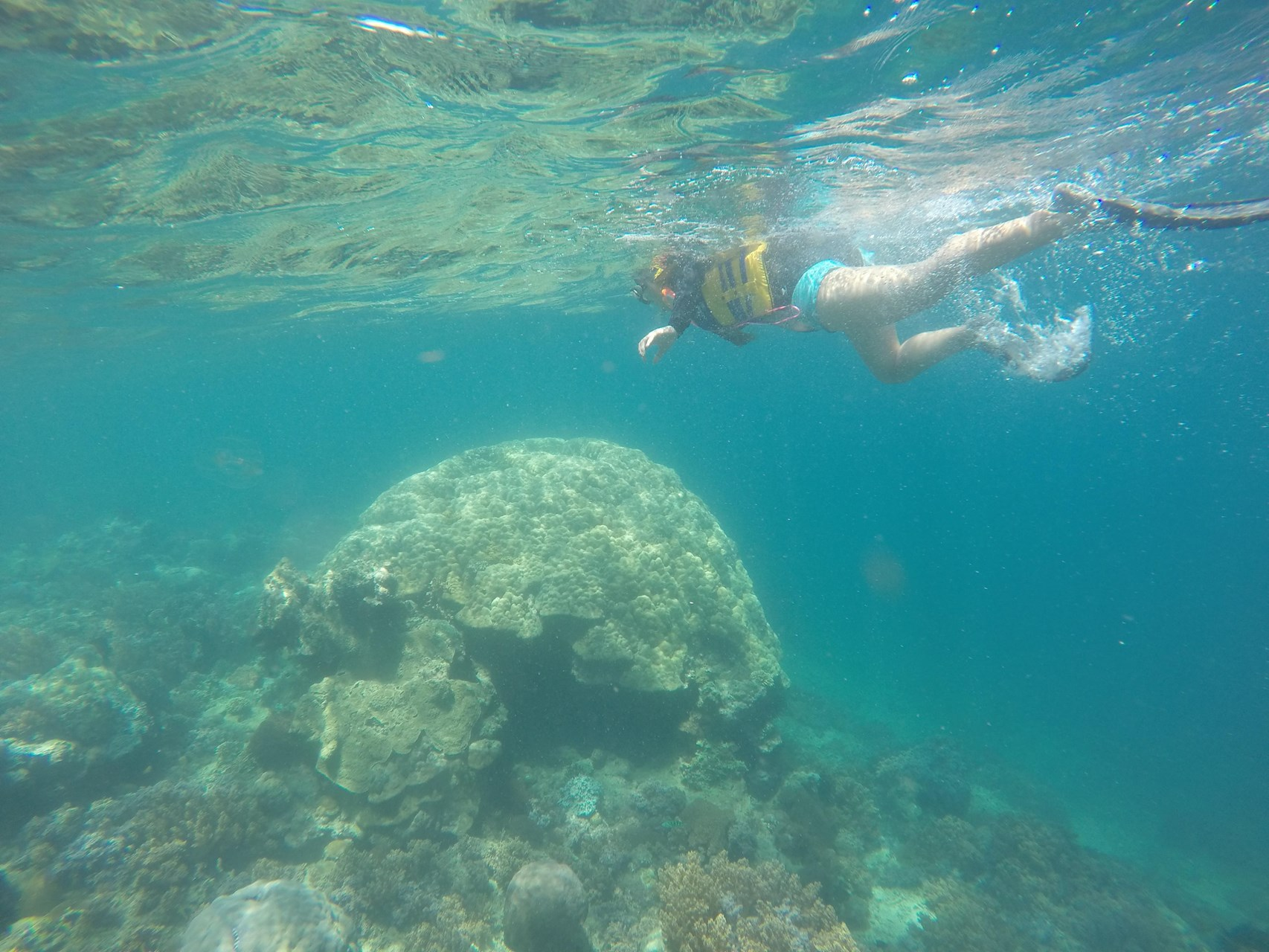 Lombok Short Escape 4.jpg