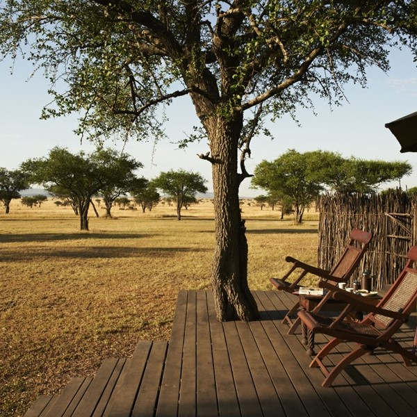 Selous game reserve.jpg
