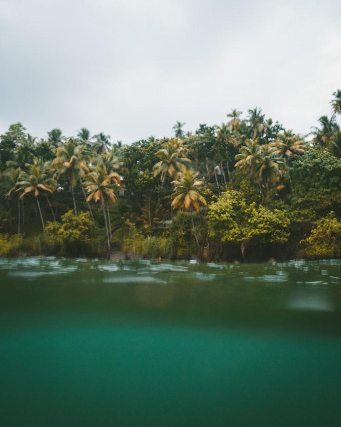 Sri Lanka nature tours.jpg