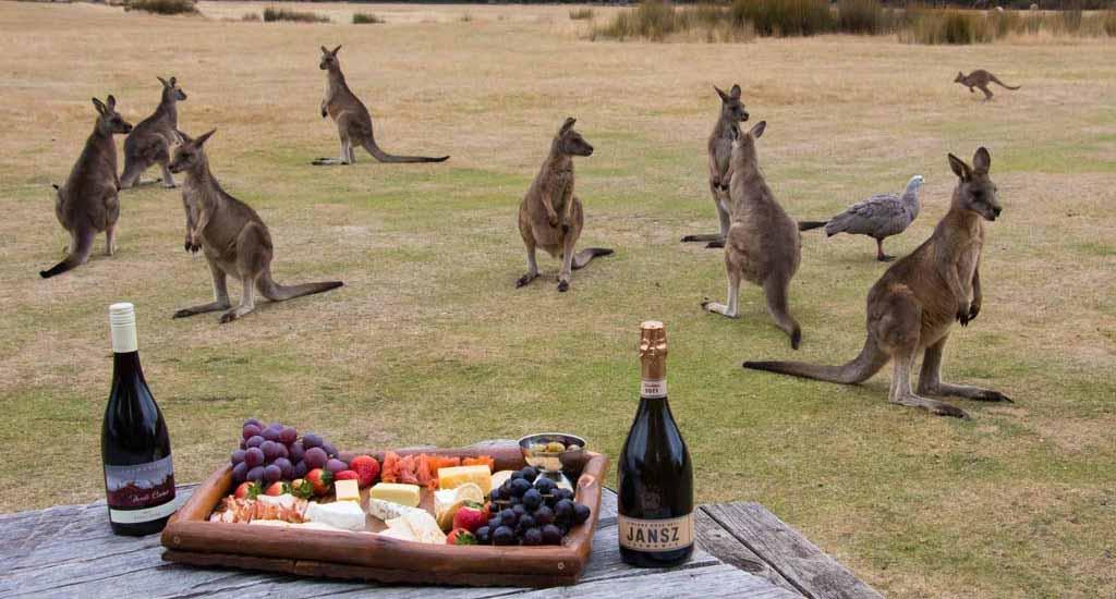 Tasmania Food.jpg