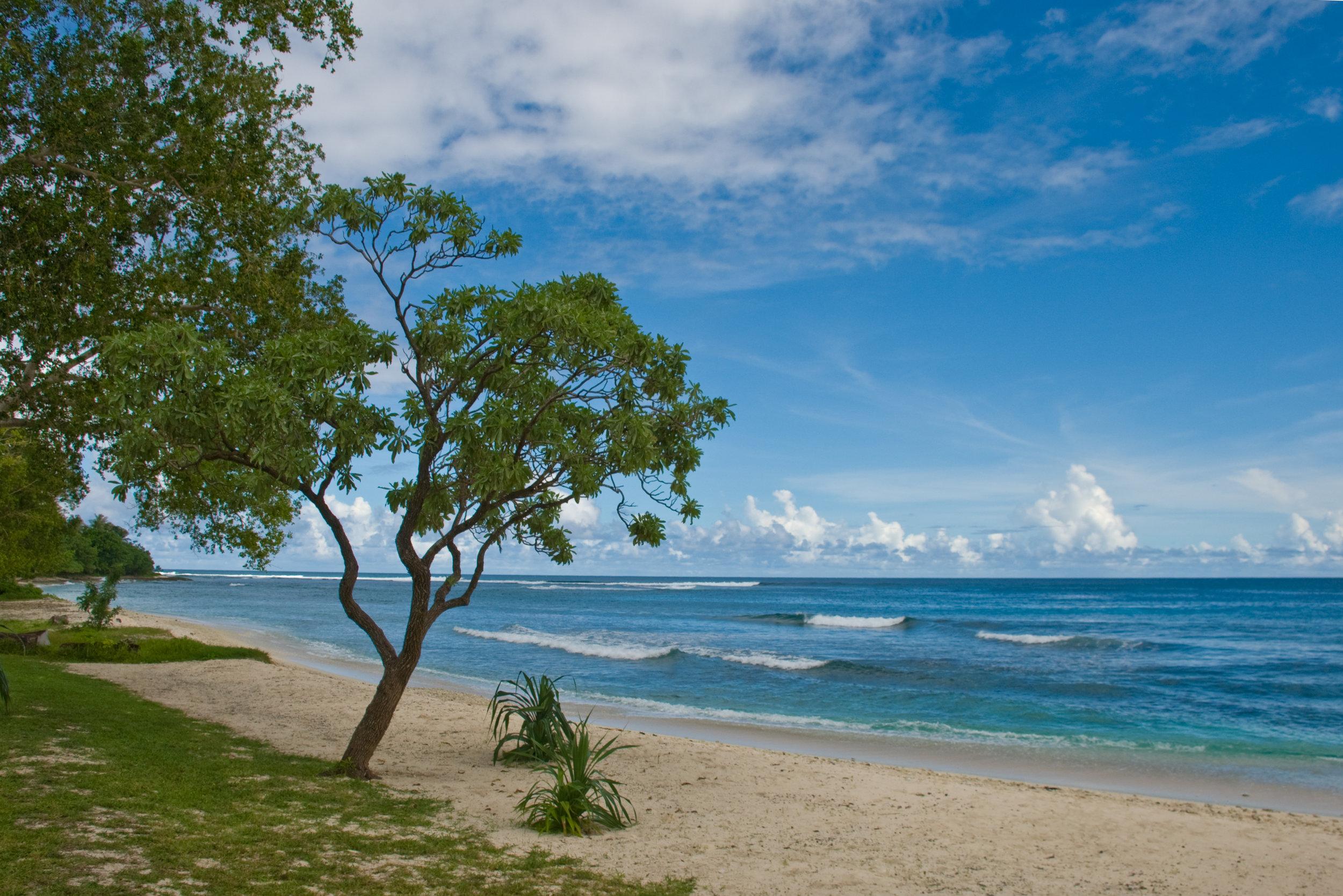 Vanuatu 4.jpg