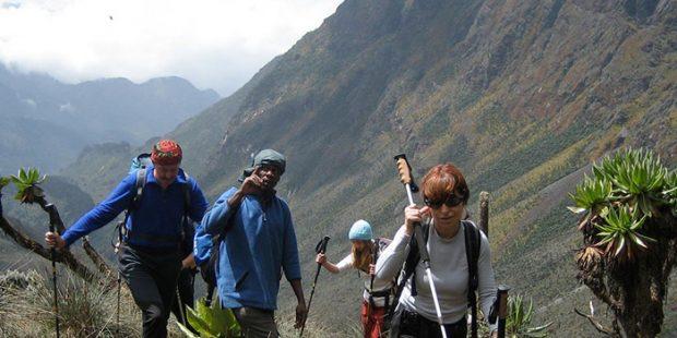 Hiking in Rwenzori Mountains