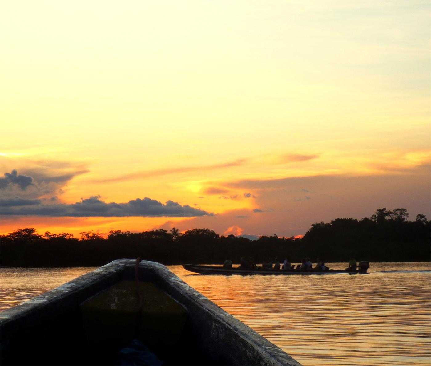The Amazone