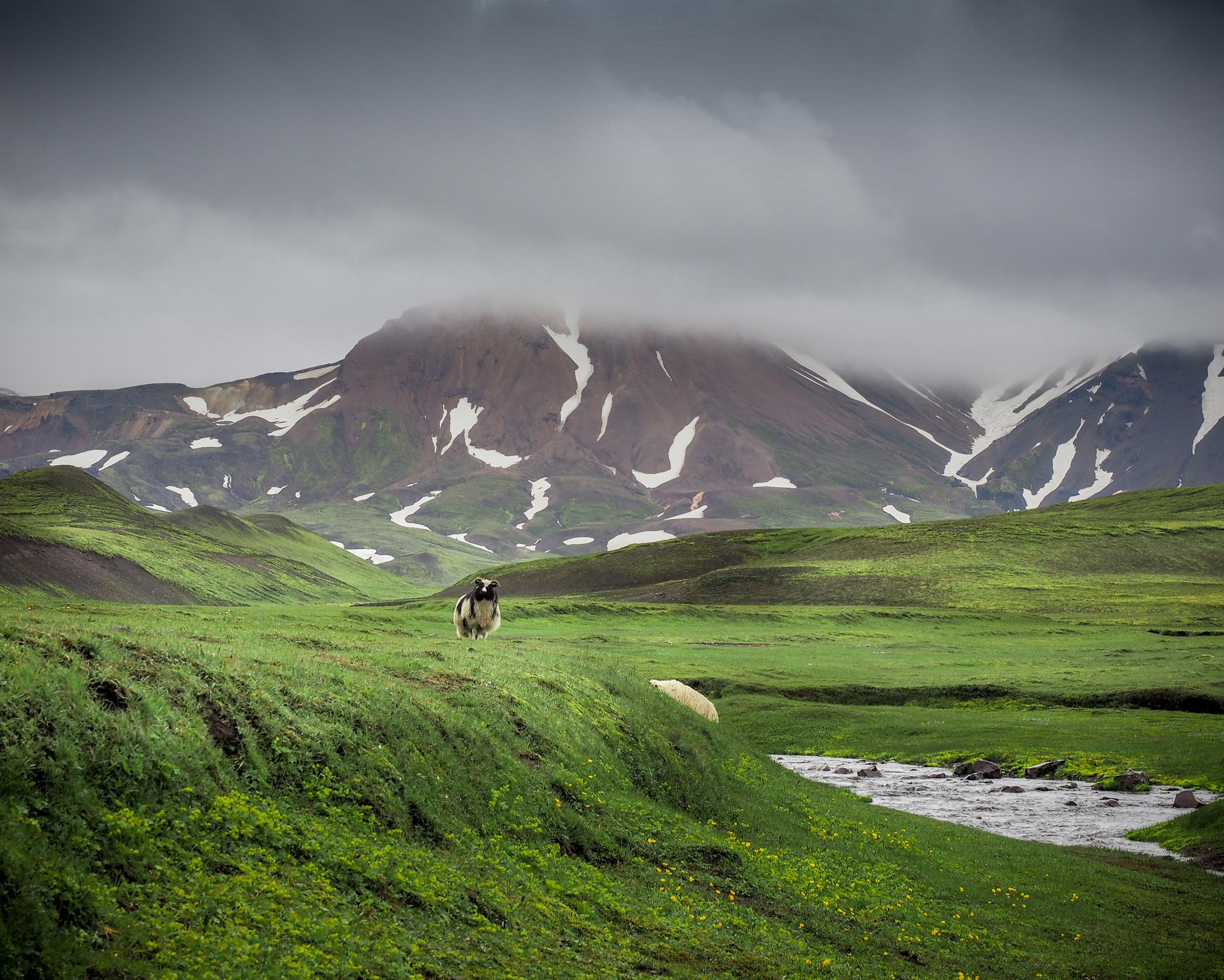 square Iceland 18.jpg