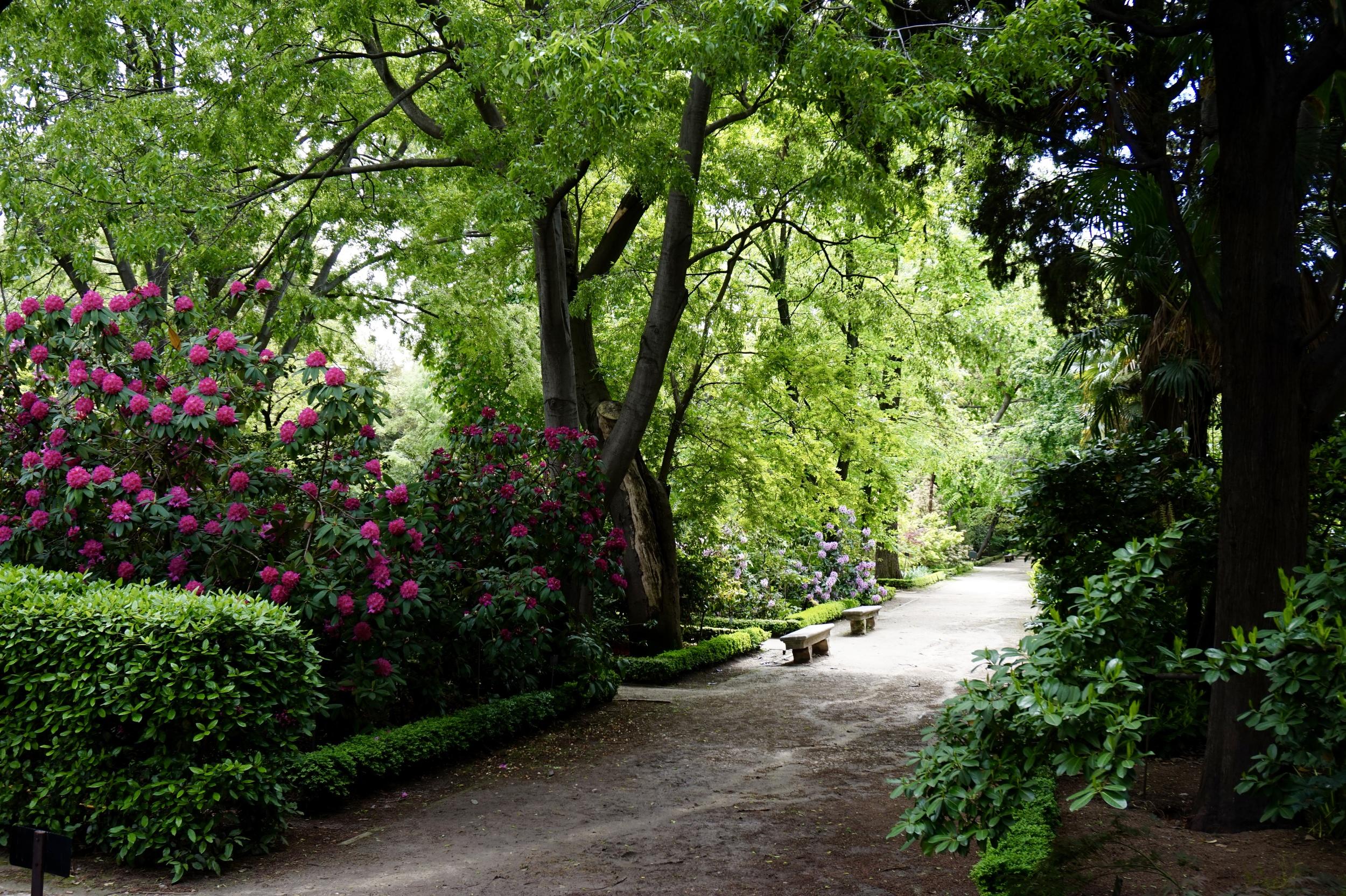 Royal Botanical Gargen